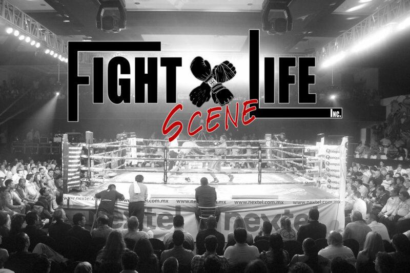 Fight Life Scene Network Videos